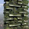 MEDIU / Italia va avea prima pădure verticală din lume