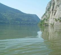 Braconaj piscicol la Dunare