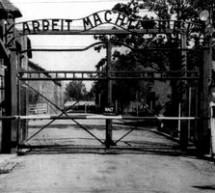 20 de state finanteaza inceperea unui amplu program de intretinere a Muzeului de la Auschwitz-Birkenau