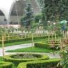 Start la pregatirile festivalului din Parcul Rozelor