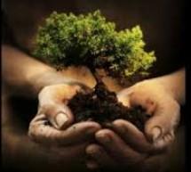 Protejand biodiversitatea, ne protejam viitorul!