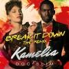 Prima colaborare Kamelia feat Doc Slim
