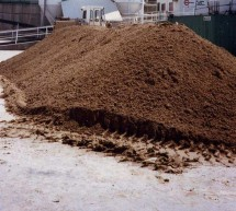 Utilizarea namolului in agricultura judetului Timis