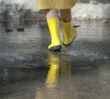 Avertizare. Cod galben de ploi torentiale și intensificari ale vantului în judetele Timis si Arad