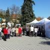 Sute de timisoreni si-au testat gratuit sanatatea inimii in Parcul Rozelor