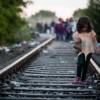 """""""Vieti in miscare – despre migratie si refugiati"""""""