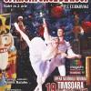 Spargatorul de nuci la Opera din Timisoara