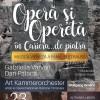 Concert de opera si opereta in cariera de piatra la Bocsa