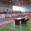 Champions Karate Cup 2019, ediția a II-a