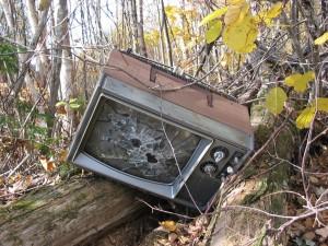 RoRec: Suceveni, trimiteţi la plimbare deşeurile de echipamente electrice şi electronice!