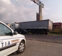 Aprozarul Poliției a primit marfă: tone de cereale, fructe și legume confiscate