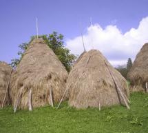 TURISM / Festivalul cositului și fânului din Harghita