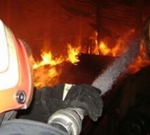 SOCIAL / Hală industrială distrusă de flăcări în Baia Mare