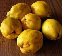 FEMINA / Fructul ideal pentru curele de slăbire