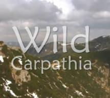 TURISM / Prințul Charles, într-o emisiune care promovează turismul românesc (video)