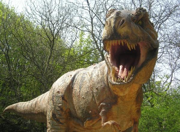 Expozitie de dinozauri la mall