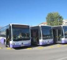 Infiintarea primei linii de autobuze care vor circula si noaptea in Timisoara