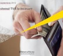 Implementarea TVA la încasare: un efort neplanificat de companii