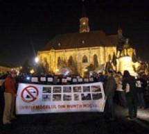 """350 de persoane au protestat la Timisoara, Cluj si Bucuresti, pentru """"Oprirea macelului din Natura Romaniei""""!"""