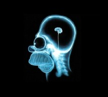 S-a descoperit gena prostiei. Vestea buna e ca poate fi anihilata