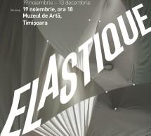 Expozitia Elastique