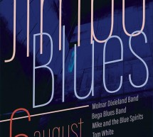 Jimbo Blues va avea o noua editie in 6 august 2016, la Teatrul de Vara din Jimbolia