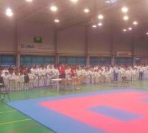 Sportivii de la Golden Karate Timisoara din nou pe podium la Open Timisoara si Cupa Sho-Dan Karate