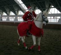 Crăciunul…pe cai mari! Eveniment ecvestru, caritabil, la Manejul Timisoara