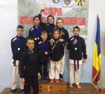 Sportivii Clubului Golden Karate Timisoara, pe podium la Simeria