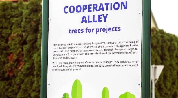Proiect transfrontalier româno-ungar la Gyula– plantare simbolică de copaci